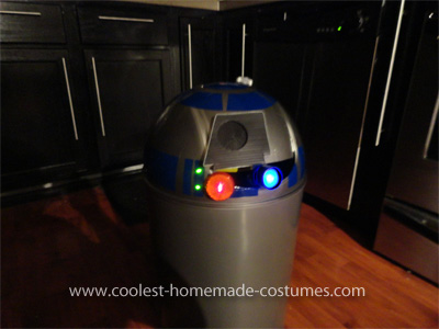 C3PO and R2D2 Star Wars Couple Costume