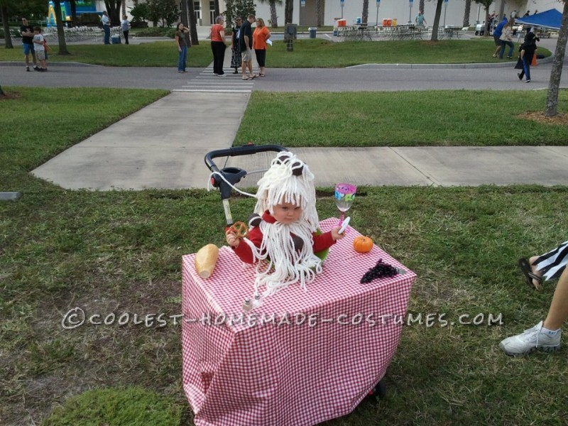 Cute Baby Bowl of Spaghetti and Meatballs Stroller Costume - 1