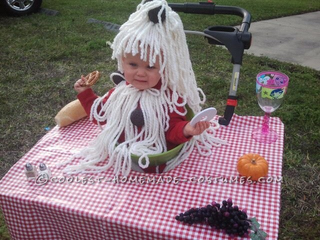 Cute Baby Bowl of Spaghetti and Meatballs Stroller Costume
