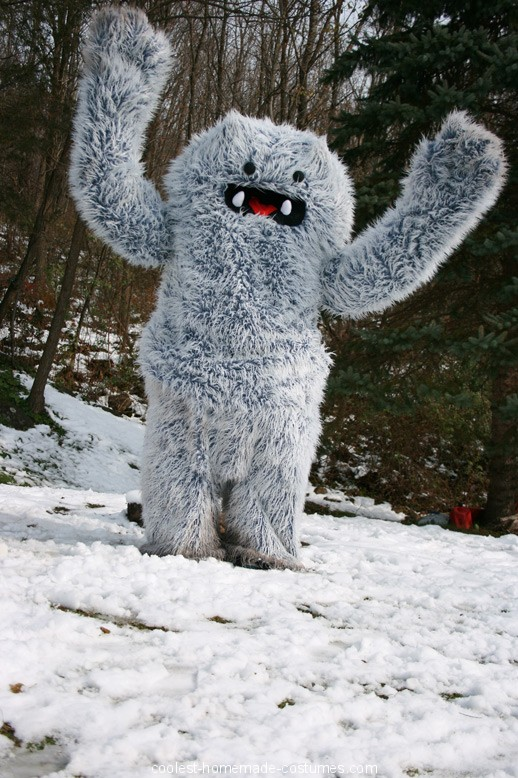 Catskill Mountain Yeti Costume