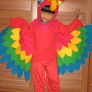 My 2 ½ year old son Aaron was selected to be a parrot at his Preschool fancy dress contest. I was very apprehensive at first but going through