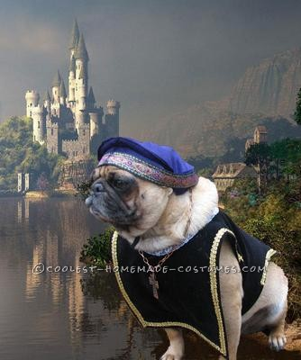"This is Sir Walter. He was entered in the Pug Social ensemble (more than one pug) costume contest with his mate Josie dressed as the ""Tudors&rd"