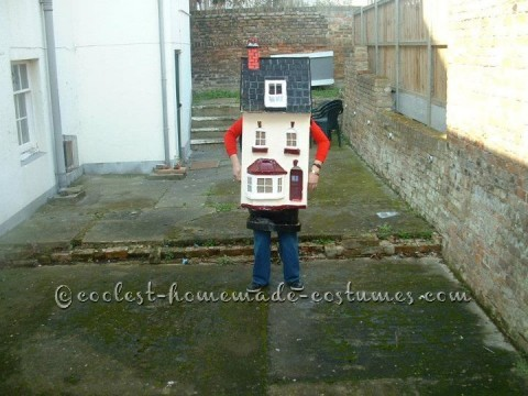 To get the idea of what you any House costume is to that a look at you own house. what ever the look you need. one evey big box that fit your body. f