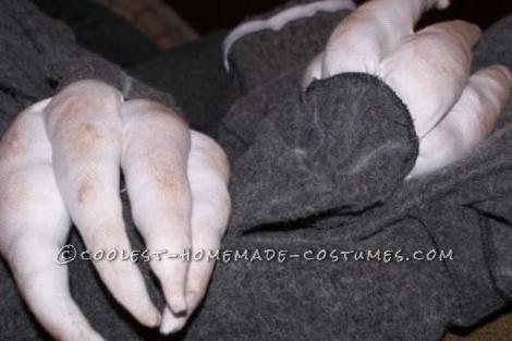 shoe polished claws