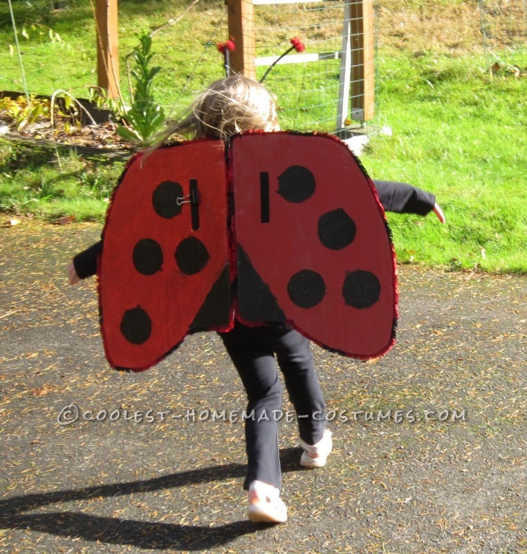 Cool Homemade Insect Costumes: Butterfly and Ladybug - 2