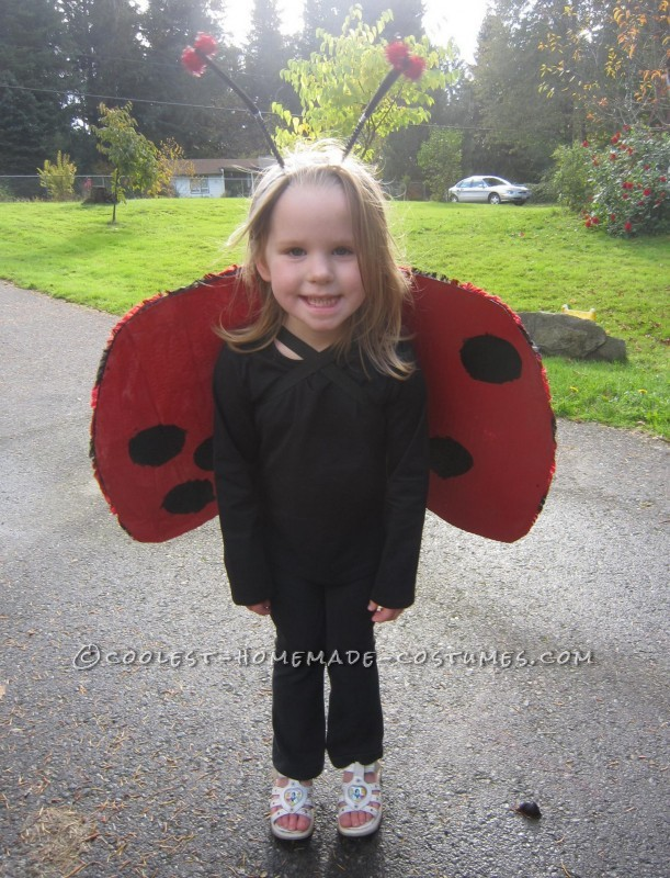 Cool Homemade Insect Costumes: Butterfly and Ladybug - 4