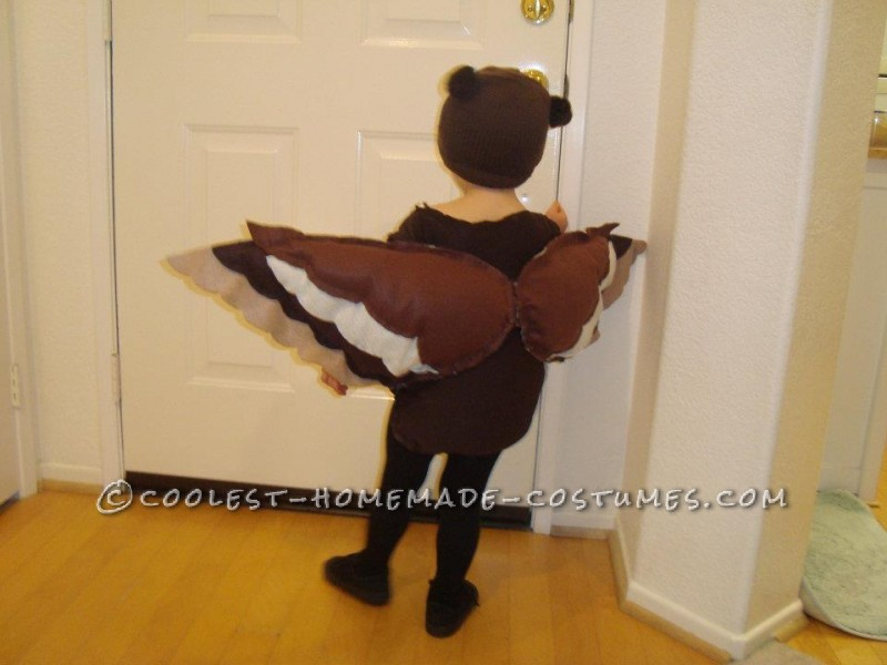 Coolest Owl Costume for a Little Boy - 1