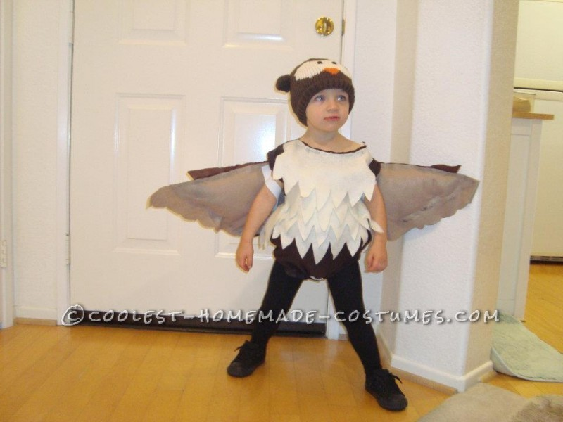 Coolest Owl Costume for a Little Boy - 2