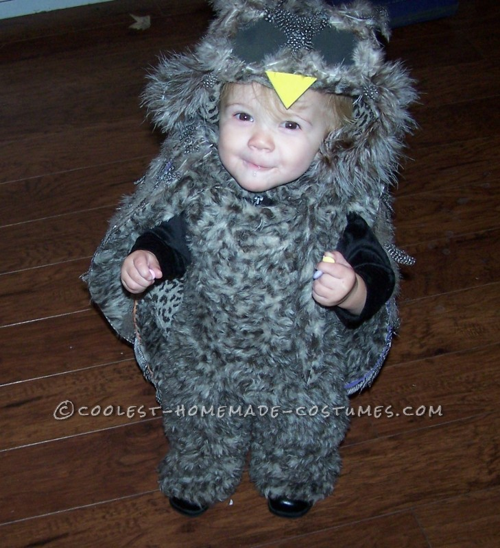 Cutest Homemade Owl Costume