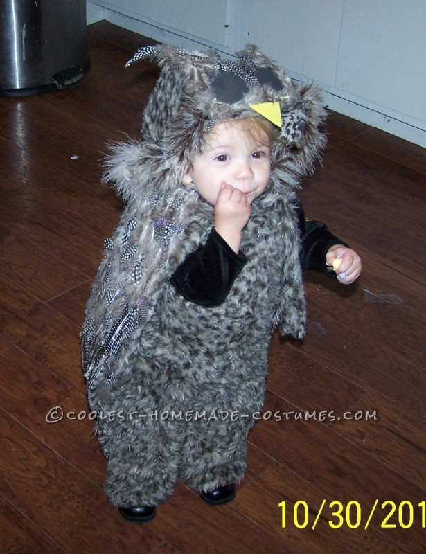 Cutest Homemade Owl Costume - 1