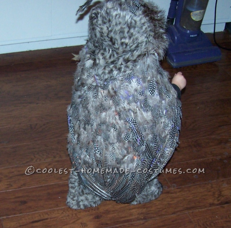 Cutest Homemade Owl Costume - 3