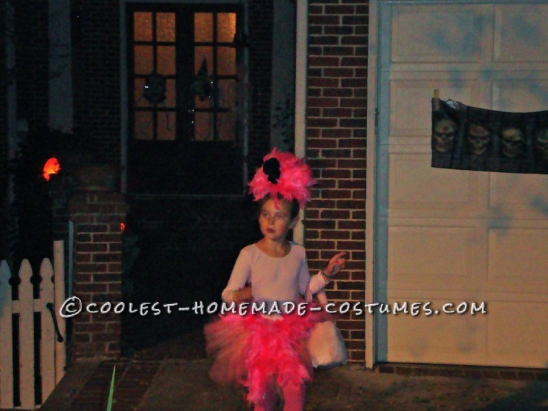 Flamingo trick or treat