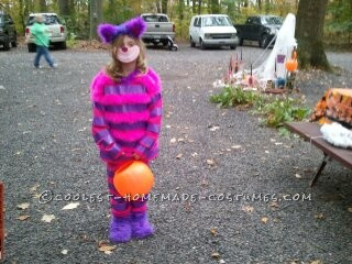 My daughter wanted to be the Cheshire Cat from Alice in Wonderland in the worst way, but the costumes were not what I would want my daughter to wear,