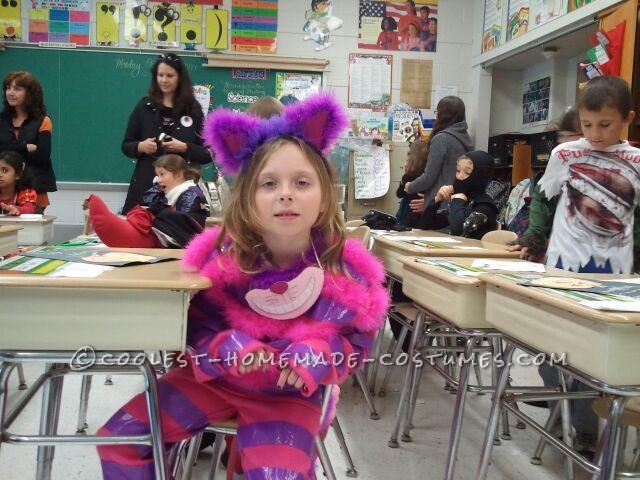 Cheshire at School