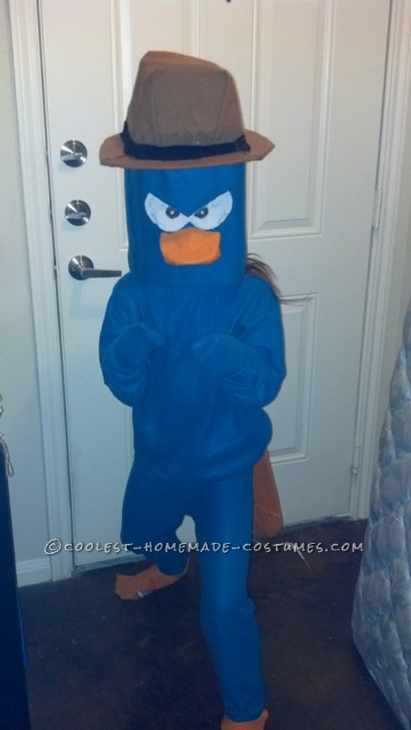 My 9 year old wanted to be Perry so I searched for material and the fun began.  I used and old sweatshirt and old sweats (that fit) to cut a pat