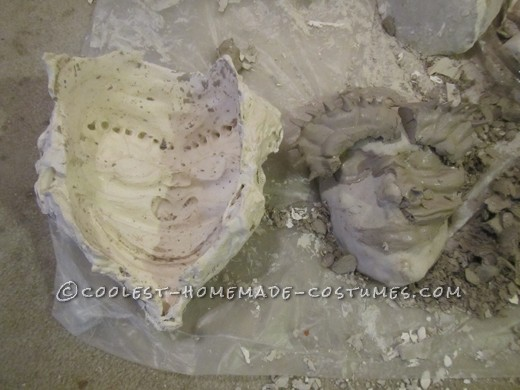 Plaster mold with remains of clay sculpt on life cast