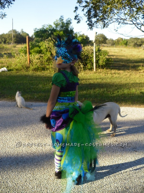 Awesome Homemade Peacock Costume - 5