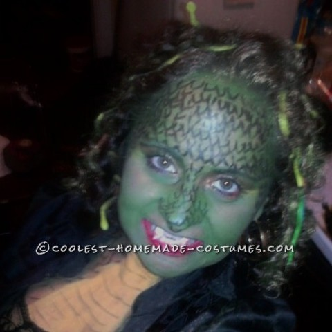 Hey, I dressed up as Medusa in 2010.  I just knew I wanted to be Medusa for the longest time....But, I'm broke as a joke.  So, I came up w