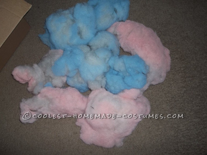 Coolest Cotton Candy Dog Costume Idea - 3