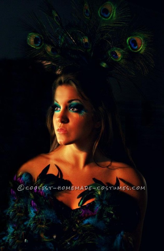 Coolest Homemade Sexy Peacock Costume - 2