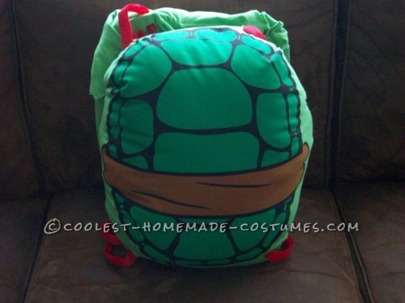Back of turtle shell