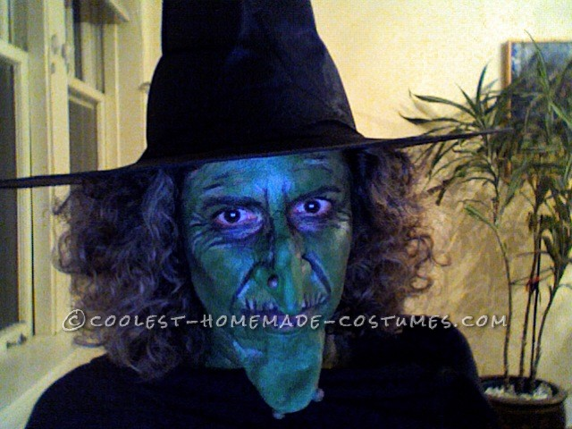 Coolest Sand-Witch Halloween Costume - 4