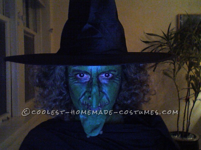 Coolest Sand-Witch Halloween Costume - 2