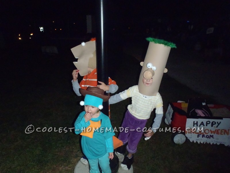 Awesome Family Costume: Phineas, Ferb, Agent P. and Dr. Doofenshmirtz - 3