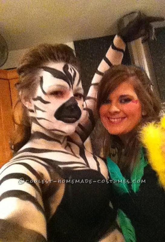 Easy Homemade Zebra Costume