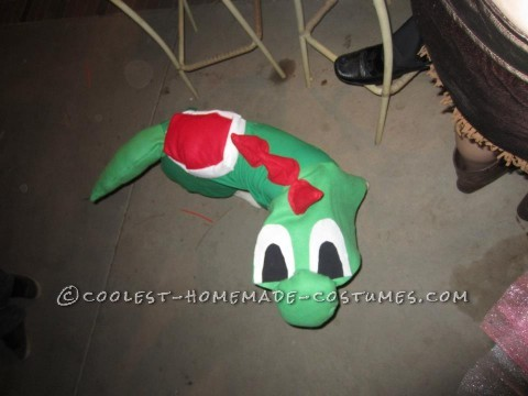i made my dog's costume but using a green t-shit and a yard of green fabric and felt squars in red and white. I cut the felt in the shape of a