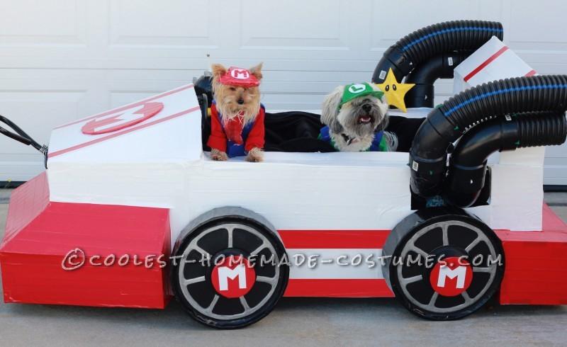 Mario Kart Dogs