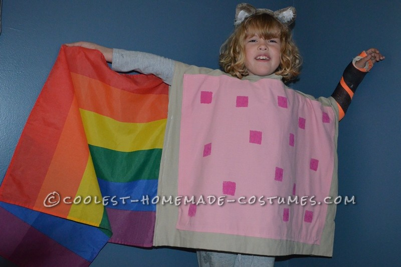 Coolest Nyan Cat Halloween Costume