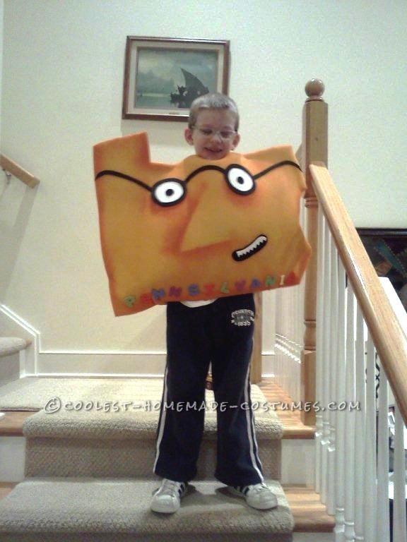 Original Child's Costume Idea: The Scrambled States of America - 3