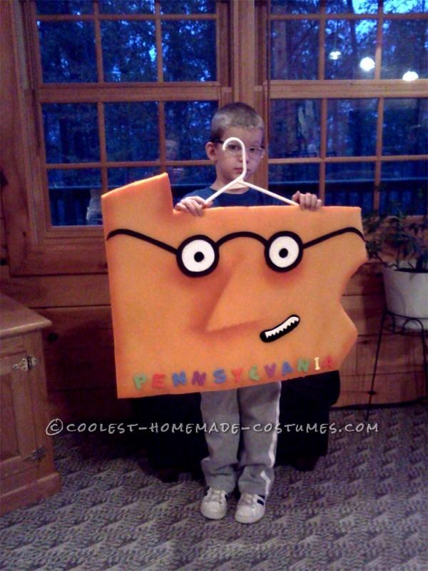 Original Child's Costume Idea: The Scrambled States of America - 2
