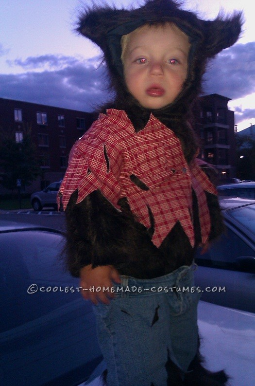 Littlest Wolfman Homemade Halloween Costume