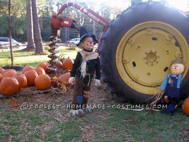 Coolest Homemade Child Scarecrow Costume from The Wizard of Oz - 2