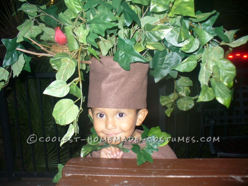 """Our son wanted to be a scary tree and there are no """"tree costumes"""" that we could buy so we got some material from Joanns and a lot of leafs from mi"""