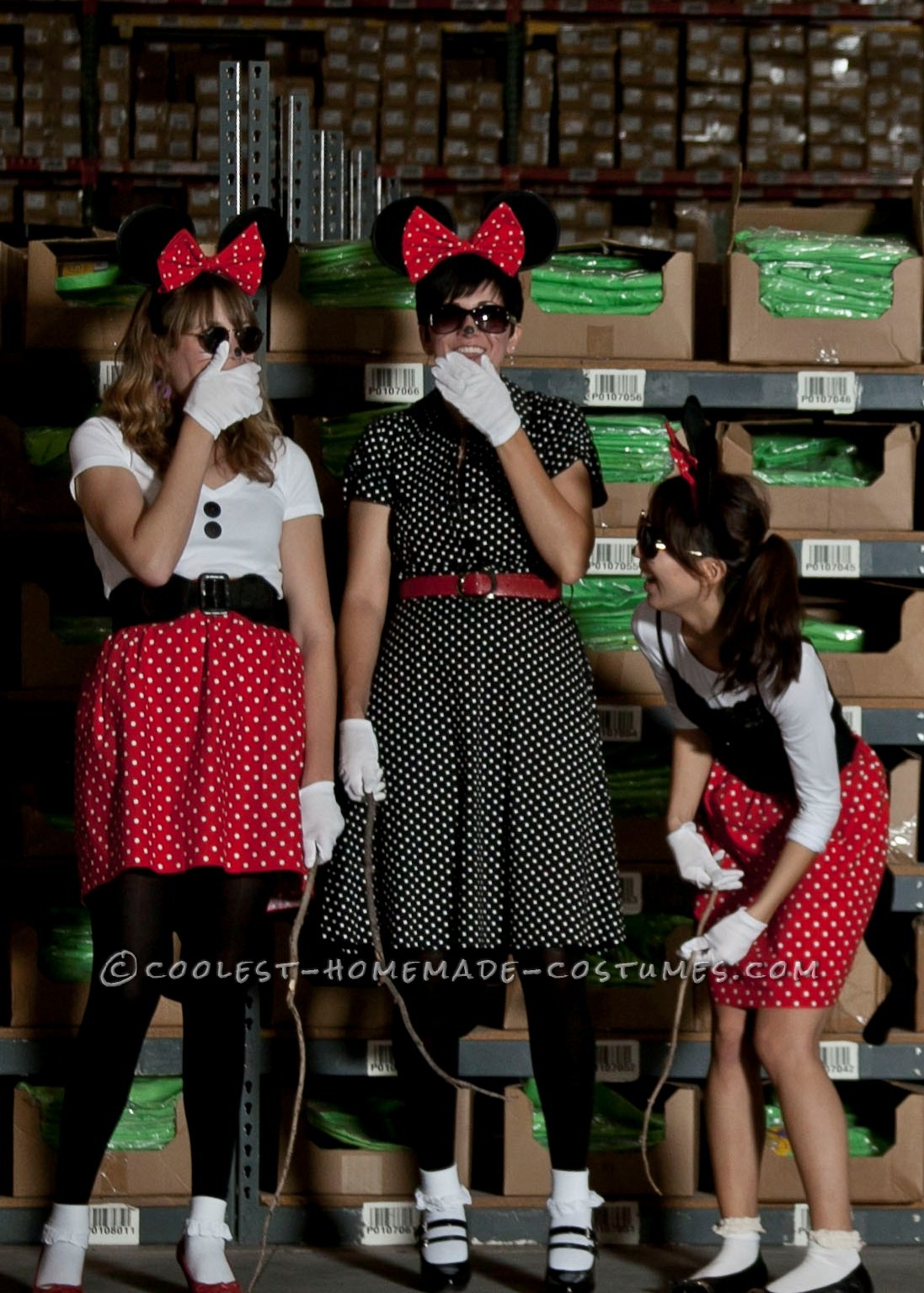 The Three Blind Minnie Mice costume idea was for a work custume contest. We wanted to come up with something different and somehow thought of doing t