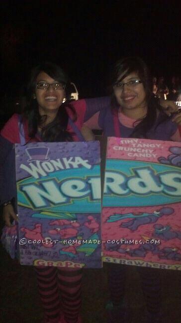 Homemade Box of Nerds Couple Halloween Costume