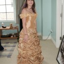 Hand Made 1756 Belle Ball Gown (of Beauty and the Beast)