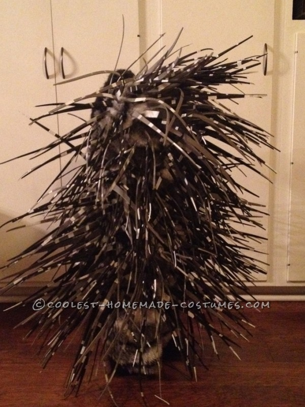 Homemade Prickly Porcupine Costume for a Girl - 2