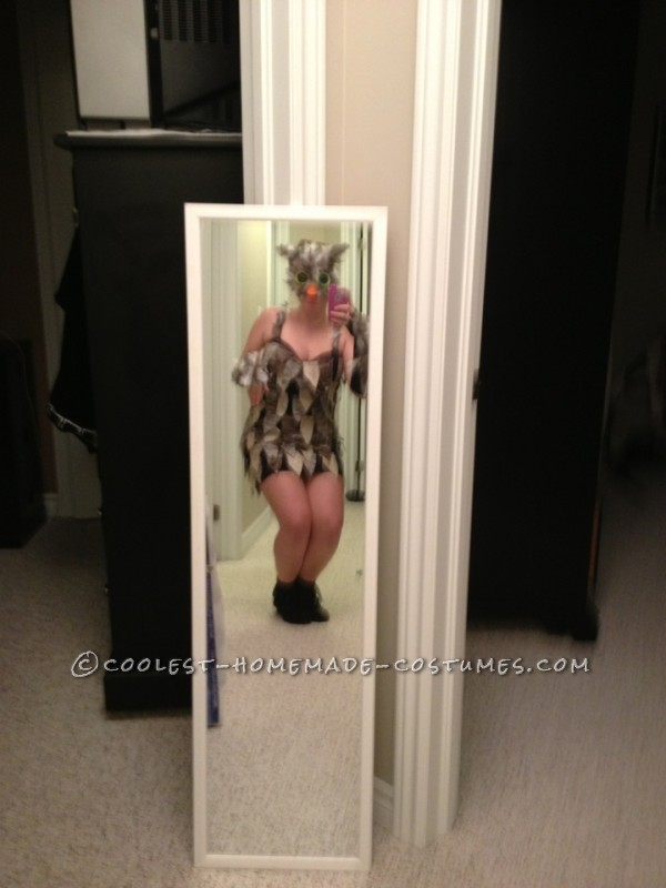 Best Woman's Owl Homemade Halloween Costume: I had several ideas in mind for my Halloween costume this year. The costume ideas were Pocahontas, Disney Princess, cat and owl. My decision to be