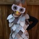 Owl Costumes