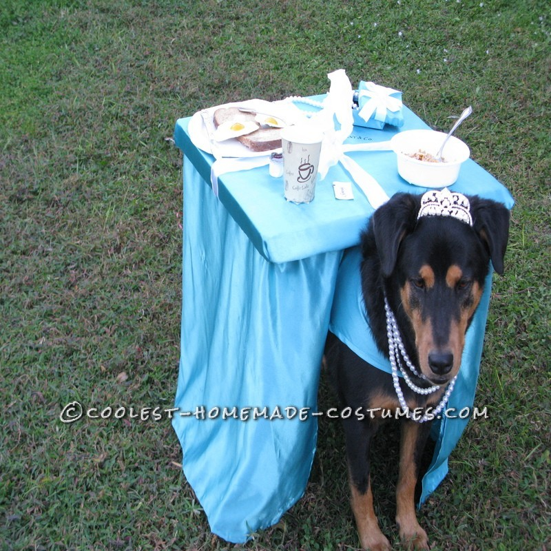 Breakfast at Tiffany's Owner and Dog Costume - 9