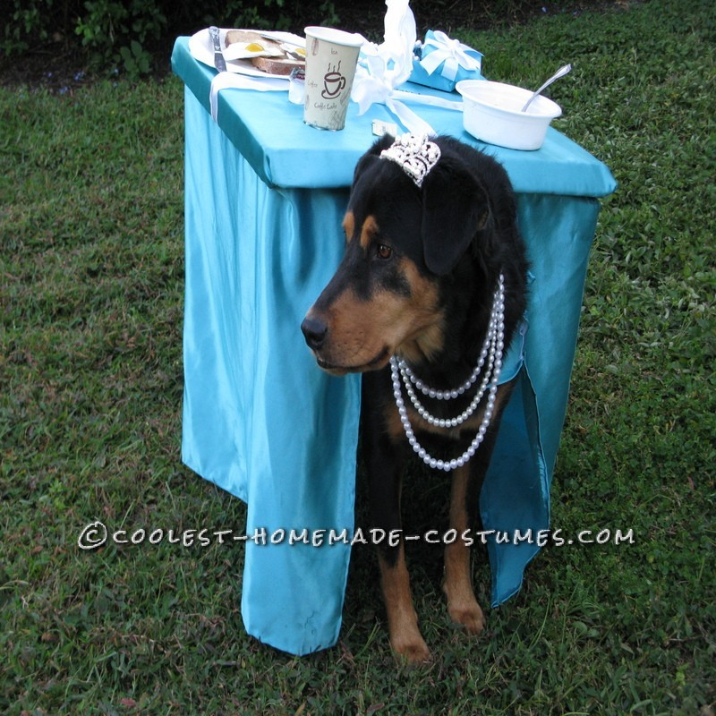 Breakfast at Tiffany's Owner and Dog Costume - 8