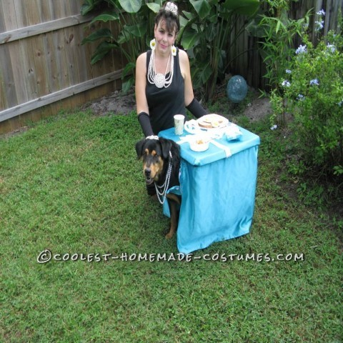 Breakfast at Tiffany's Owner and Dog Costume