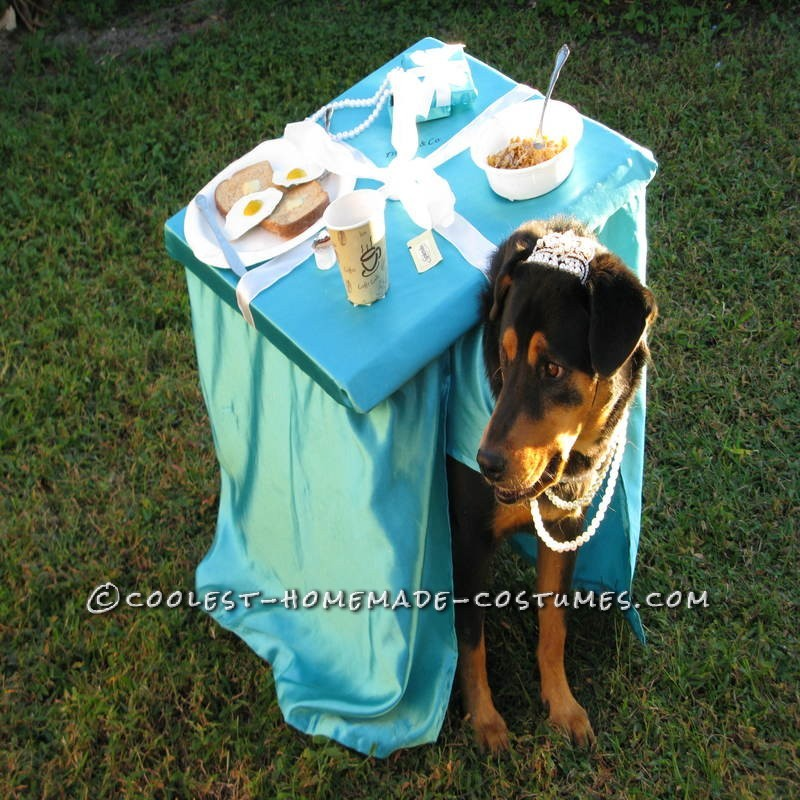 Breakfast at Tiffany's Owner and Dog Costume - 3