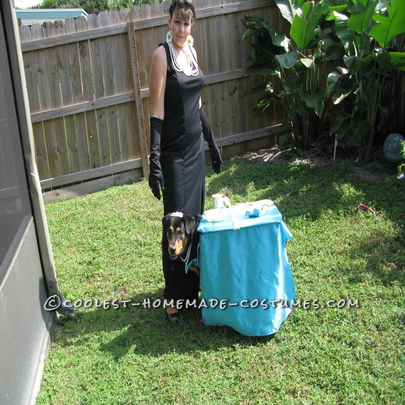 Breakfast at Tiffany's Owner and Dog Costume - 2