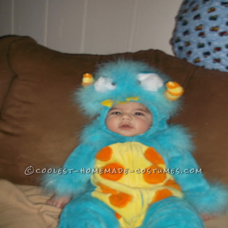 Silliest Baby Scully Costume from Monsters Inc.: This year I was blessed with my very first grandchild. On July 4th, 2012 Cayden was born at 8lbs 0oz and 21 inches! He has changed my life forever and