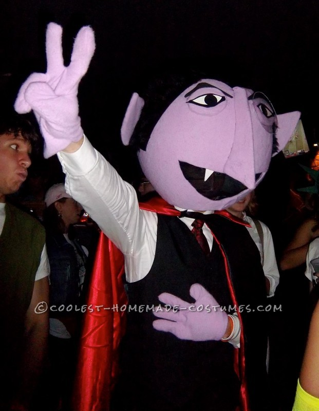 Coolest Homemade Count Von Count Costume